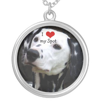 Mim coração meu cão sua colar da foto