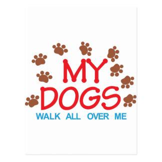 Minha caminhada dos cães cartão postal