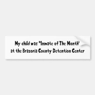 Minha criança era interno do mês adesivo para carro