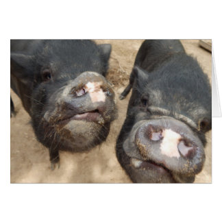 Mini porcos personalizados do preto dobro dos cartão comemorativo