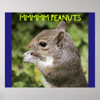 Mmmmm amendoins - esquilo engraçado poster