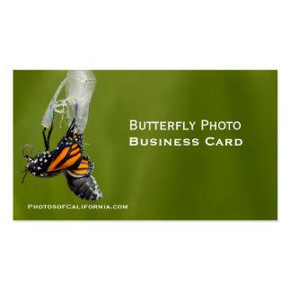 Modelo de cartão de negócios da foto do casulo da cartão de visita