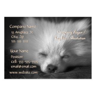 Modelo de cartão de negócios do sono Pomeranian Cartoes De Visitas