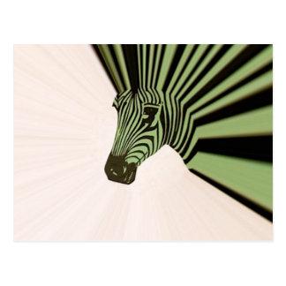 mohawk da zebra cartão postal
