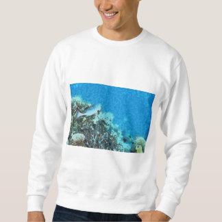 Moletom Peixes que movem-se sobre o recife
