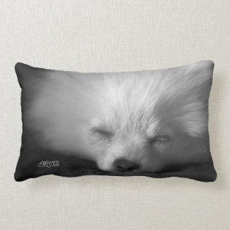 Monograma adoràvel bonito Snoozing Pomeranian Almofada Lombar