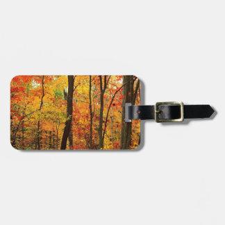 Montanhas apalaches carmesins da floresta etiquetas para bagagem