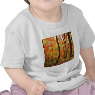 Montanhas apalaches carmesins da floresta tshirts