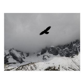 Montanhas nevado de Eagle do cartão