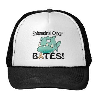 MORDIDAS do cancer Endometrial Bone