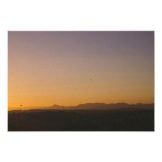 Morning birds impressão de foto