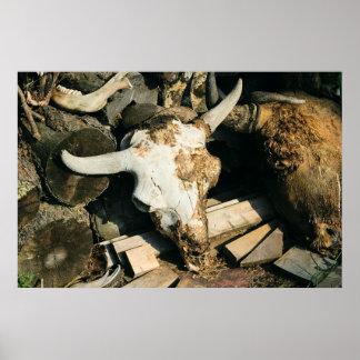 Morte em uma fazenda do búfalo impressão