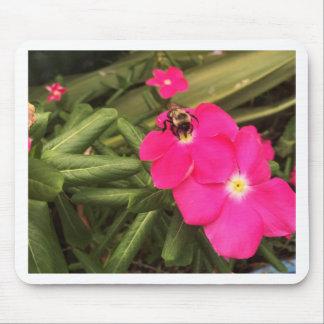 Mousepad abelha