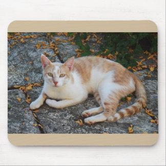 Mousepad Afortunado o gato bonito