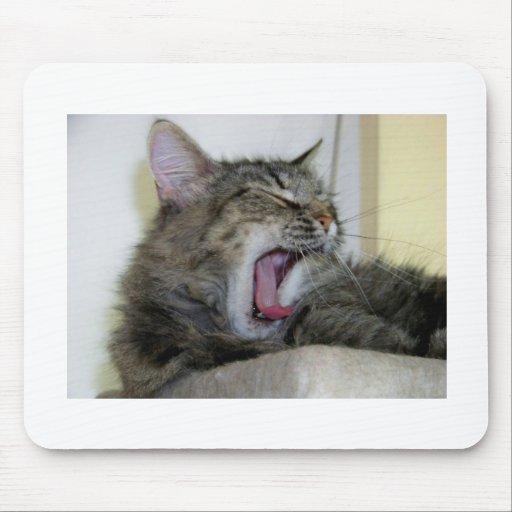 Mousepad Bocejado gato