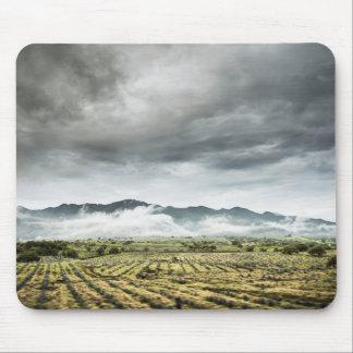 Mousepad Campos rurais da colheita sob o céu nebuloso
