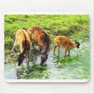 Mousepad Cervos