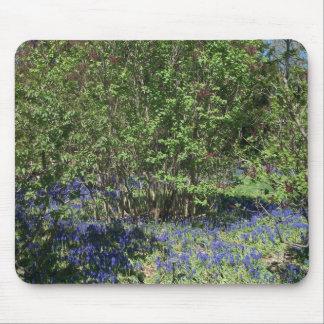Mousepad com a foto da paisagem da flor e da natur