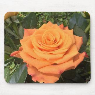 Mousepad cor-de-rosa da foto da laranja bonita