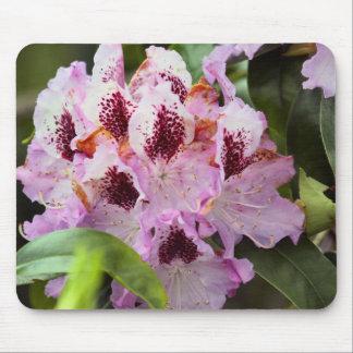 Mousepad Flor do primavera