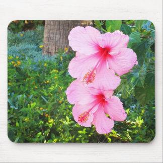 Mousepad Flores cor-de-rosa do hibiscus