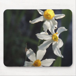Mousepad Flores selvagens