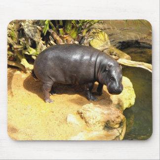 Mousepad Hipopótamo que aprecia a luz do sol do primavera