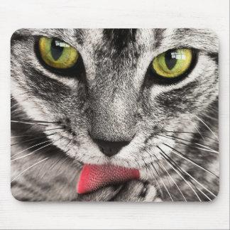 Mousepad O gatinho lambe