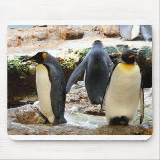 Mousepad Rei pinguins