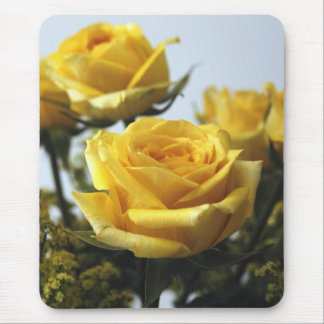 Mousepad Rosas da amizade
