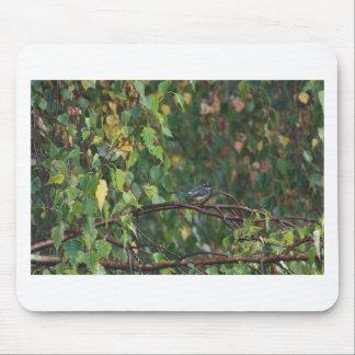 Mousepad um pássaro no arbusto