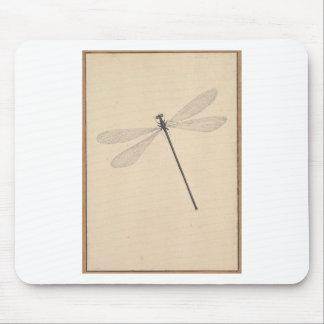 Mousepad Uma libélula, por Nicolaas Struyk, cedo 18o C.