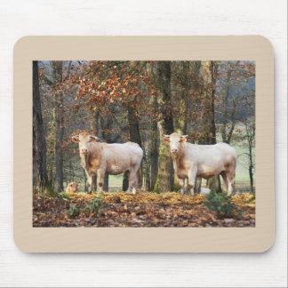 Mousepad Vacas na floresta, France