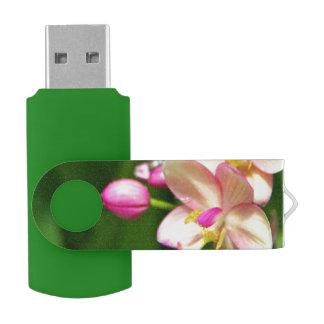 Movimentação do flash do Orchidaceae Pen Drive Giratório
