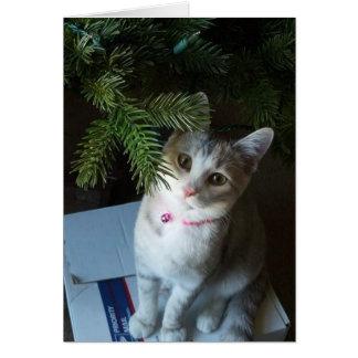 Muffin do Feliz Natal (cartão) Cartão