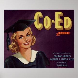Mulher da graduação de Co-Ed da faculdade do vinta Pôsteres