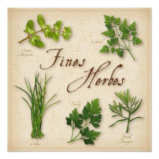 Multas Herbes, salsa, cebolinho, estragão, Poster Perfeito