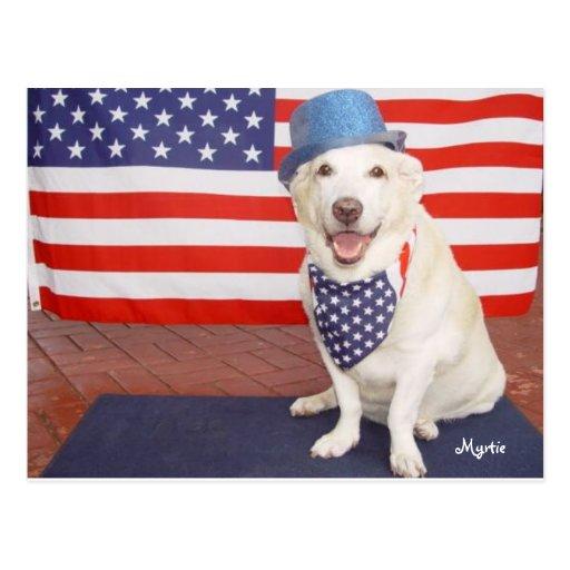 Myrtie patriótico cartão postal