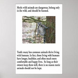 MythPoster: Animais exóticos Poster