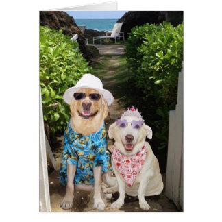 Namorados engraçados do laboratório/cão cartão comemorativo
