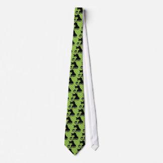 Não me dê o conselho dizer irritado do gato gravata
