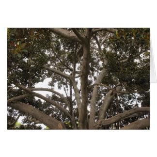 nas árvores cartão comemorativo