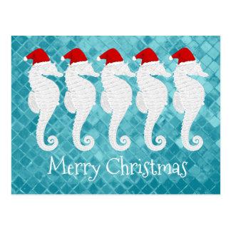 Natal do cavalo marinho cartão postal