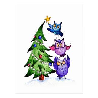 Natal do ` s da coruja cartão postal