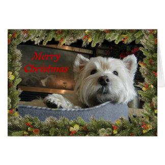 Natal Westie com o cartão da foto da festão