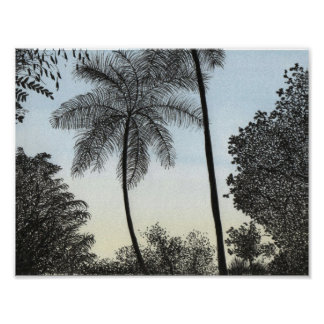 Nature silhuette poster