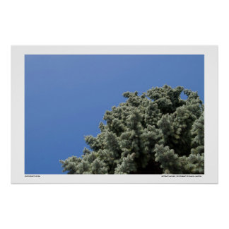 Natureza abstrata poster