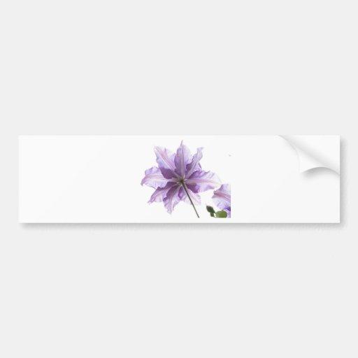 Natureza da flor adesivos