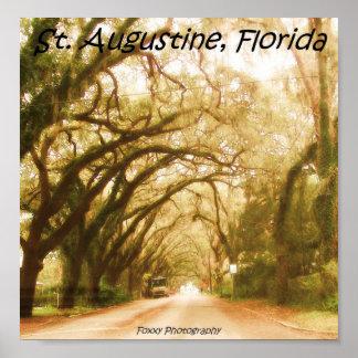 Natureza de Florida Poster