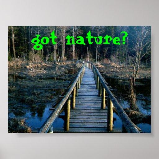 natureza obtida? poster